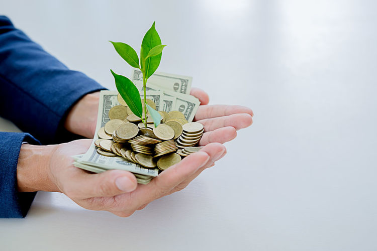 Cropped image of businessman holding plant and currency over table