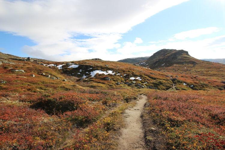 First Snow Forollhogna Nationalpark Happy Hiking Norway Norwegian Autumn Reflection Colorful Nature Fall Hidden Beauty Hiking In Norway Land Of The Trolls Norwegian Landscape Norwegian Nature Norwegian Seasons Trøndelag