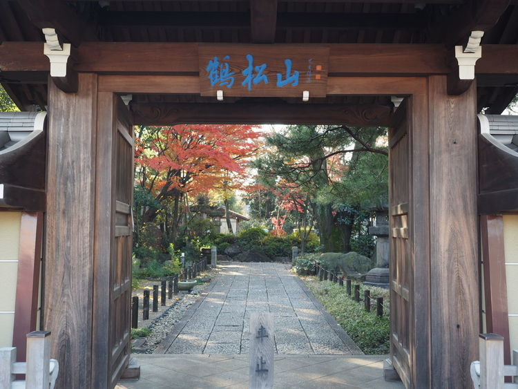 Architecture Entrance No People Morning Neighborhood Japanese Temple Atumn Temple Nature Atumn Photograhy Tree Atumn Colors Taking Pictures Tradition Taking Photos