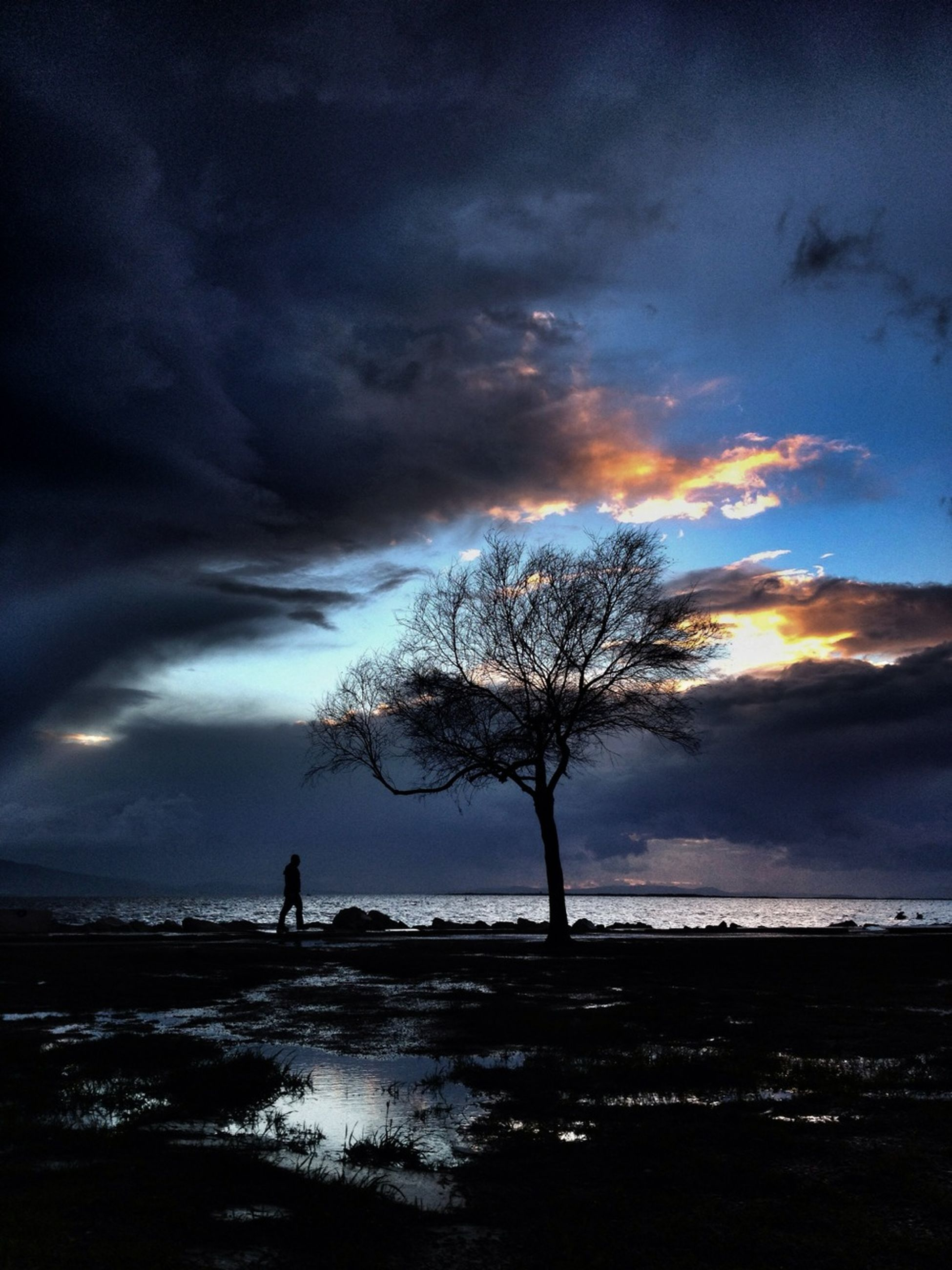 silhouette, sky, tranquility, tranquil scene, scenics, beauty in nature, cloud - sky, tree, sunset, water, nature, cloud, bare tree, idyllic, cloudy, landscape, outline, dusk, outdoors, lake