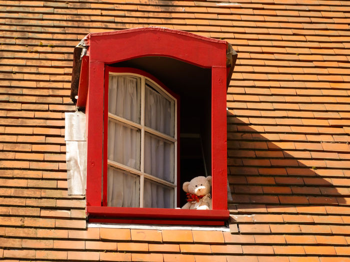 Architecture Building Exterior Pets Built Structure Red Domestic Day Domestic Animals Window Mammal One Animal Brick People House Outdoors Little Bear Bear Toy Bear Brugge Looking Through Window