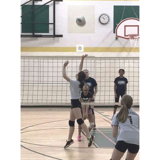 Volleyball Sports Gamer Ifollowback Imnewtothis Actionshot