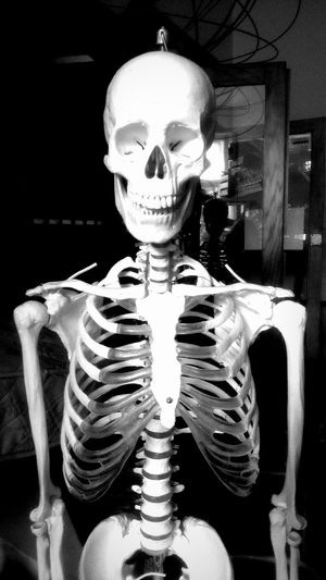 Skeleton Skull School Schoollife Artclass Taking Photos Dead Blackandwhite Creepy Hanging Out