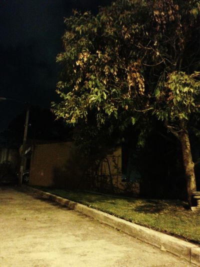 Night Photography Street Lamp ISO400 Nightwalk