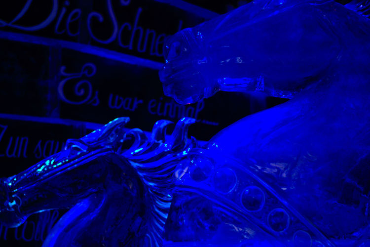 Ice museum at Karls Erlebnis-Dorf Elstal, Berlin Blue Close-up Cold Temperature Ice Horse Ice Museum  Ice Sculpture Welcome To Black