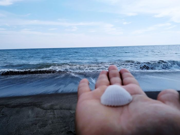 Cropped hand of person holding seashore