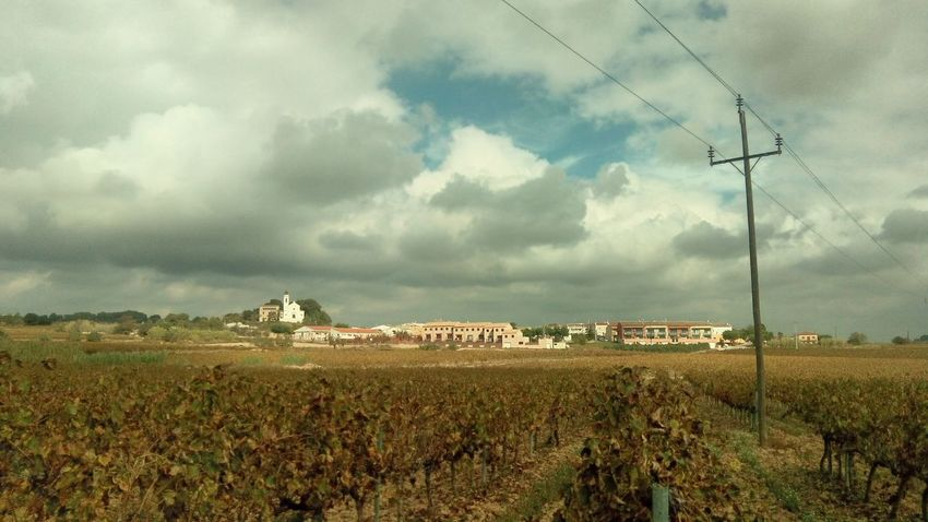 Landscape TOWNSCAPE Clouds And Sky Mobile Photography