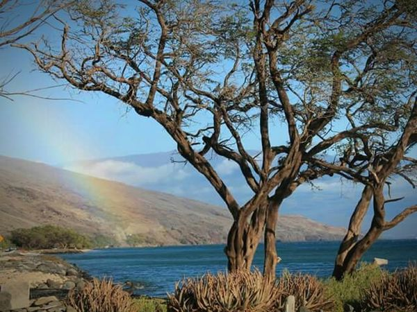 Rainbow Beach Hawaii Mauiphotography Pacific Ocean Maui Hawaii Maui Paradise Outdoor Photography Outdoors Beautiful Day