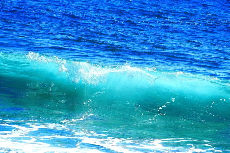 Water_collection Ocean Life Ocean Shores Kauai♡ Open Edit Hawaiilife Oceans Seascape Ocean Waves Surf Ocean Beach Photography Oceanlife Contrast Ocean Contrast Ocean Colour Scene Landscapes With WhiteWall