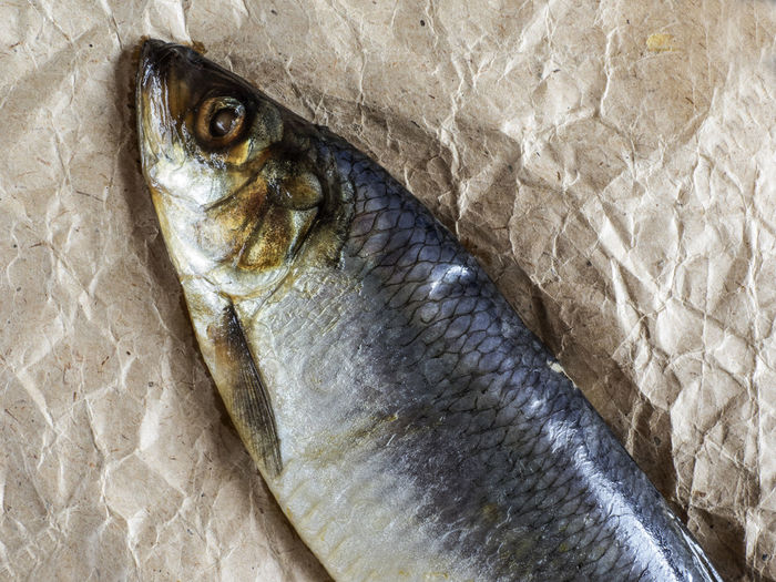 Close-up of fish on paper bag