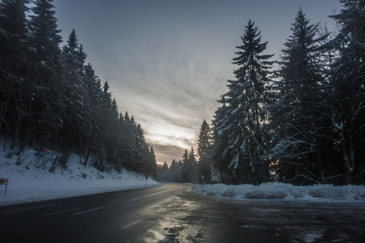 Beauty In Nature Cold Cold Temperature Day Landscape Nature No People Outdoors Road Scenics Sky Snow The Way Forward Tranquil Scene Tranquility Transportation Tree Weather Winter
