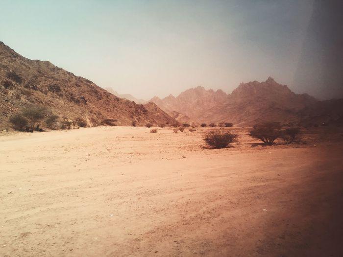 Desert Dry Medina Saudi Arabia The Great Outdoors - 2016 EyeEm Awards
