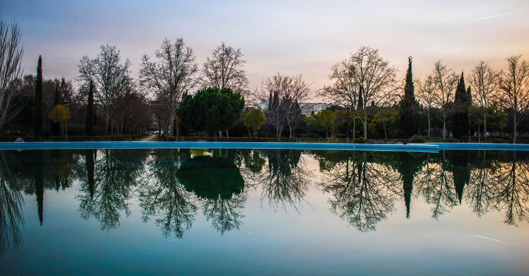 Reflejos Tree Reflection Sky Water Beauty In Nature Tranquil Scene Blue No People Tranquility Nature Lake Scenics Waterfront Outdoors Clear Sky Day