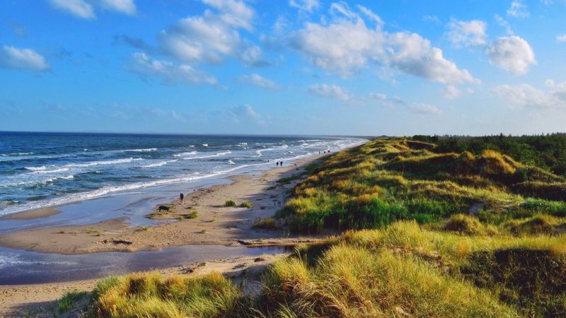 Danmark Beach Water Blue Sky Dunes Clouds And Sky Landscape Nature Sand Grass