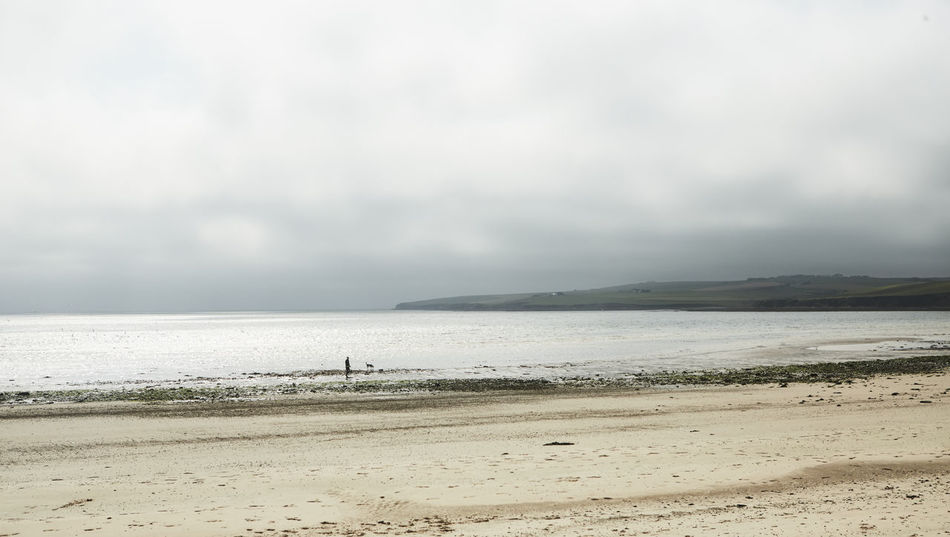 Beach Land Sky Scenics - Nature Water Beauty In Nature Sea Cloud - Sky Tranquil Scene Tranquility Day Nature Sand Horizon Horizon Over Water Non-urban Scene No People Outdoors Highlands Scotland Scottish Details Nature Wonderful Colors Orkneys