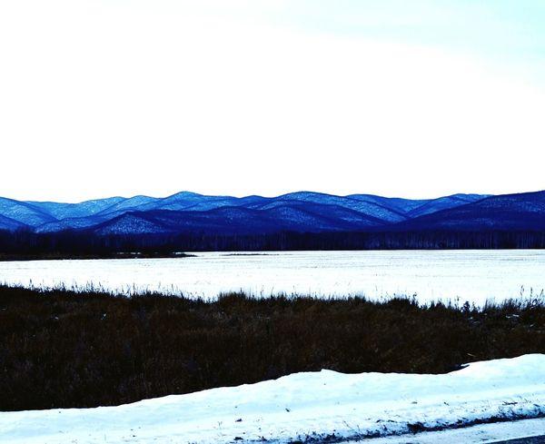Дальний восток DV Khv Nature Road Forest