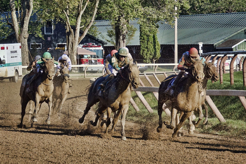 Here They Come Action Beauty In Action Fast Food Horse Racing Horse Racing Newyork Racing Car Saratoga Springs