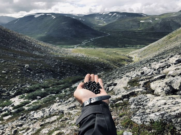 Cropped hand of man holding berries against mountain