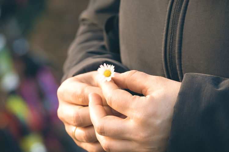 Close-up of person holding flower