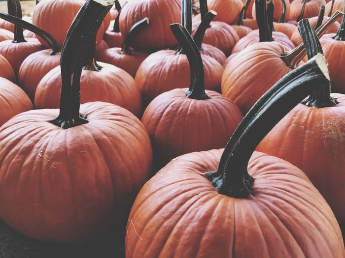 EyeEm Selects The Fall Pumpkin Orange Color For Sale Vegetable Food And Drink Halloween No People Retail  Food Day Freshness Healthy Eating Close-up Outdoors Jack O Lantern EyeEm Best Shots IPhoneography EyeEmNewHere EyeEm Gallery The Week On EyeEm