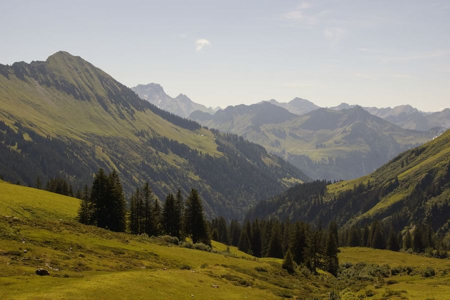 Nature Photography Mountain View Mountains And Sky Mountains And Valleys Mountain_collection Meadow Green Hiking Damüls Austria