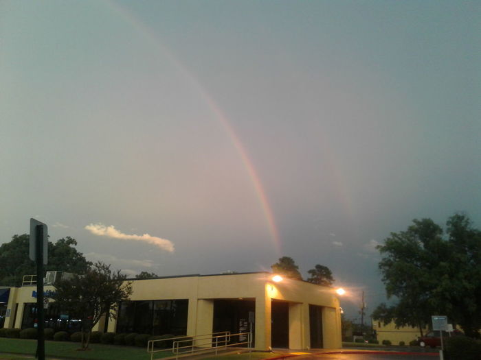 Gorgeous View Of A Double Rainbow Rainbow Tree Built Structure No People Night Outdoors Architecture Building Exterior Sky Little Rock, Arkansas Business Finance And Industry Downtown District Illuminated Breathing Space Cityscape My Point Of View Pet Portraits