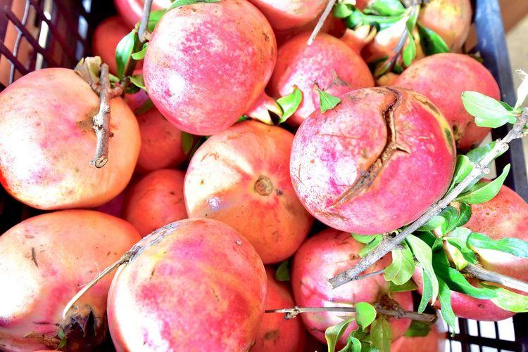 "Melograno(メログラーノ) 【幸せを運ぶフルーツだよ】とチヴィタで教えてもらいました 贈り物にちょっぴり気が利いたフルーツなんていかがですか? #foodporn#instagramjapan#vsco#IGersJP#onthetable#暮らし#クッキングラム#cooking#homemade#lunch#brunch#breakfasto#イタリアン#三軒茶屋 #ペペロッソ#tokyo#japan#東京#ザクロ#이탈리안#cuisine#烹饪#Melograno#メログラーノ 三軒茶屋のイタリア郷土料理店ペペロッソ Ristorante regionale italiano ""PEPE ROSSO"" https://www.peperosso.co.jp/ Webマガジン 「SHOP ITALIA ~あなたが知らないイタリアここにあります」にてイタリアについて執筆させていただいております https://shop-italia.jp/author/28 ザクロ Wellbeing Healthy Eating Food Food And Drink Freshness Fruit Close-up Still Life Large Group Of Objects No People Vegetable Full Frame For Sale Retail  Abundance Market High Angle View Day Organic Backgrounds"