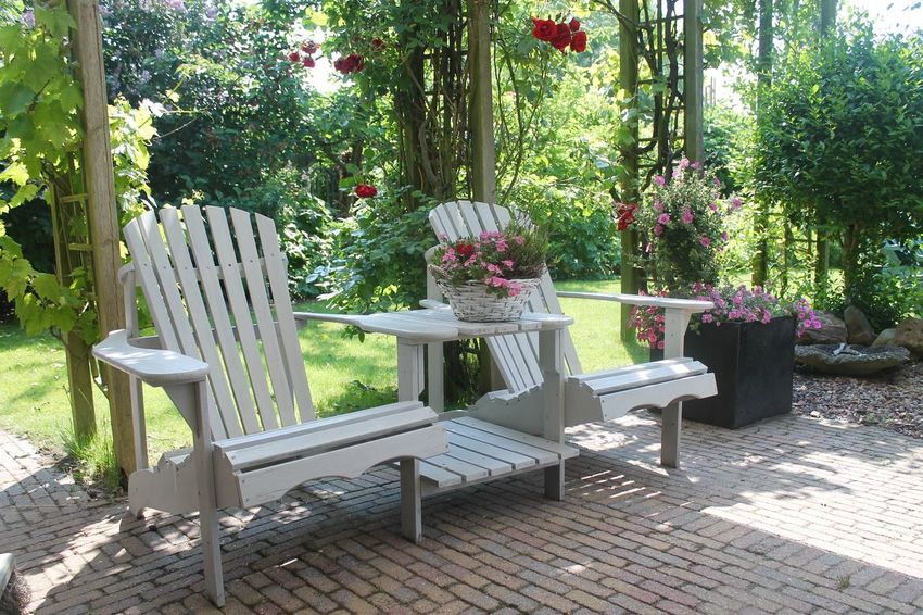 Beauty In Nature Chair Day Flower Growth Nature No People Outdoor Chair Outdoors Plant Porch Table Tree
