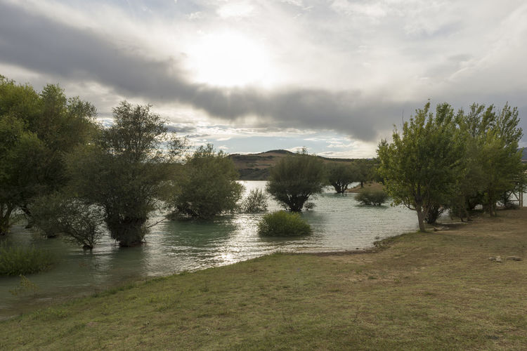 Alloz Beauty In Nature Cloud - Sky Clounds  Day Grass Growth Lake Landscape Nature Nature Navarra No People Outdoors River Scenics Sky SPAIN Tranquil Scene Tranquility Tree Water