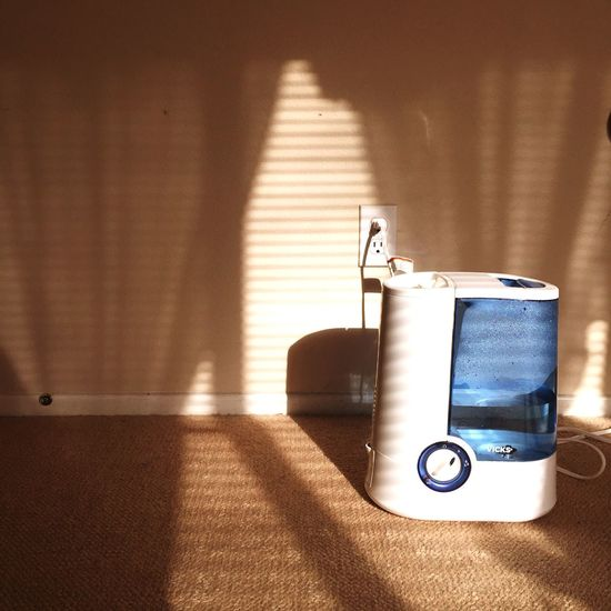 Smart Simplicity Humidifier Allergies
