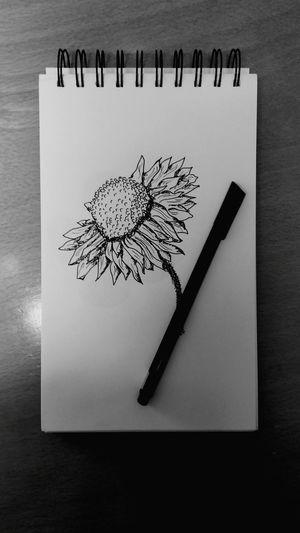 Draw Sketch Pad Flower Flower Drawing Blackandwhite