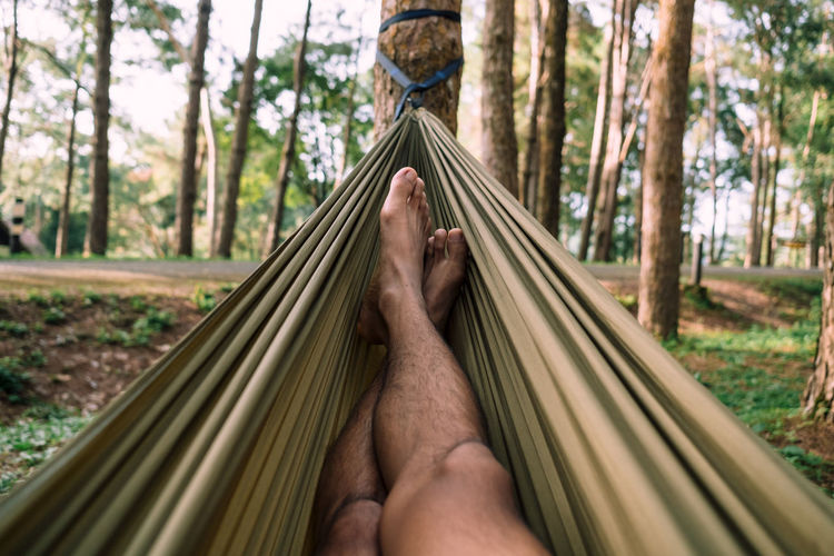 Low section of man relaxing on hammock in forest