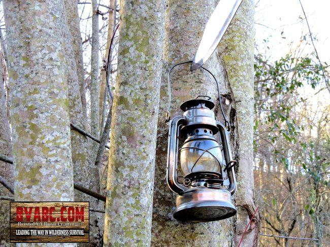 Bristol VA Bush Crafting, BVABC, BVABC.COM Day No People Oil Lamp, Old Lamp, Outdoors Tall Text Trees, Tree, Forest, Light, Tall, Tall Trees, Western Script