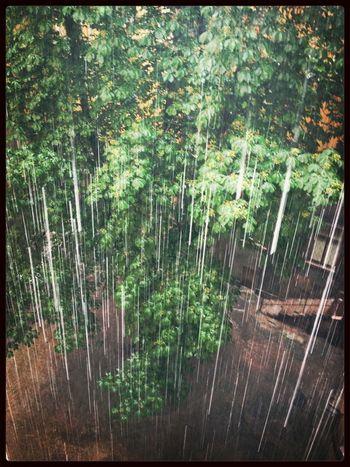 Water Nature Rain Raindrops