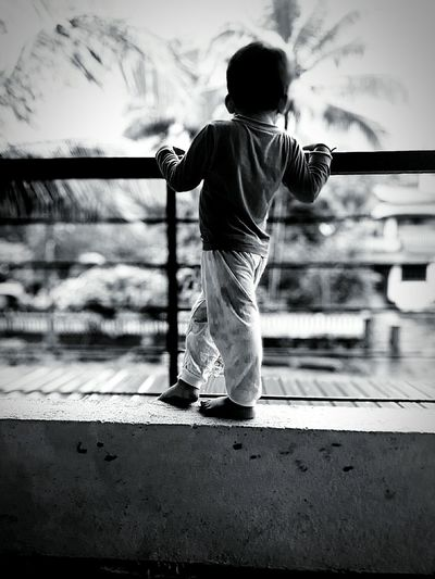 Rear view of boy standing by railing