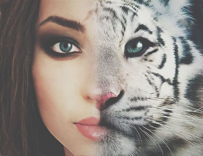 Cat Woman That's Me Cheese! Womancat Cat-o-mountain Cat Eyes Leopard Eyes  Leopard Leopard Addict