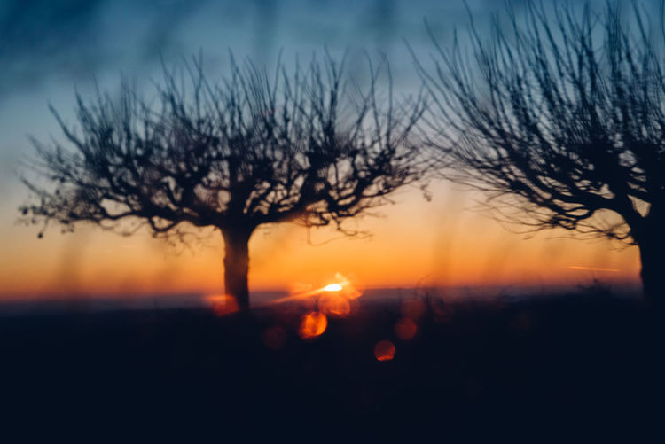 Day Outdoors Beauty In Nature Sky Tree Silhouette Sunset Drop Winter No People Scenics Snowcapped Mountain Water Drop Droplet Atmospheric Mood Forked Lightning Moody Sky Romantic Sky Frozen Cold Temperature Dew RainDrop Weather Cold Icicle Flame Bonfire Snow Covered Snowcapped Dramatic Sky
