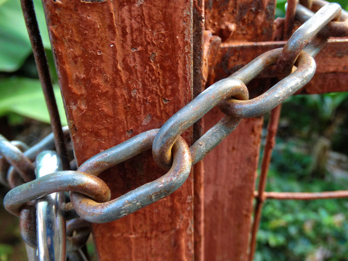 Chain on fence. Metal Protection Safety Security Chain No People Close-up Strength Fence Day Connection Barrier Rusty Boundary Focus On Foreground Outdoors Selective Focus Lock Nature Detail Iron Fencing Gate