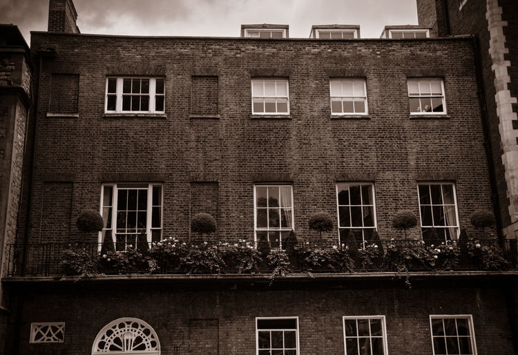 Architecture Building Exterior Built Structure Window Building Residential District No People Low Angle View Day Outdoors House Nature Sky City In A Row Side By Side Plant Old Wall The Past Apartment EyeEm Travel Photography Sepia_collection Industry London