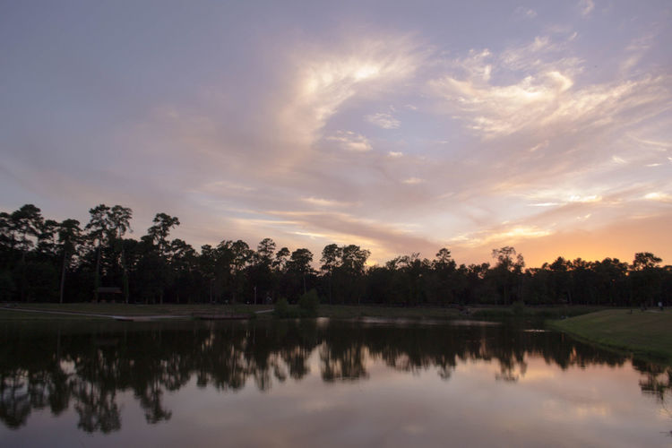 Reflection of trees in calm lake at sunset