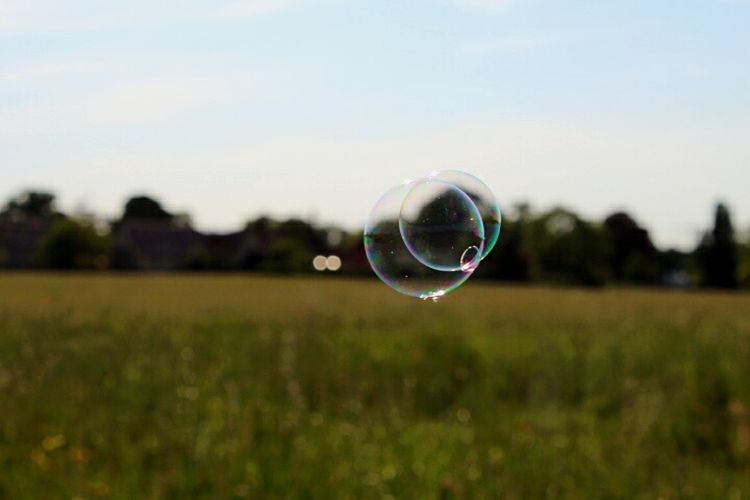 Bubble Bubble Wand Soap Sud Fragility Transparent Spectrum Refraction Mid-air Blowing Focus On Foreground Field Rainbow Day Grass Tranquility Nature Outdoors No People Sky Beauty In Nature Beauty In Nature Botany Grass Nature Frühling