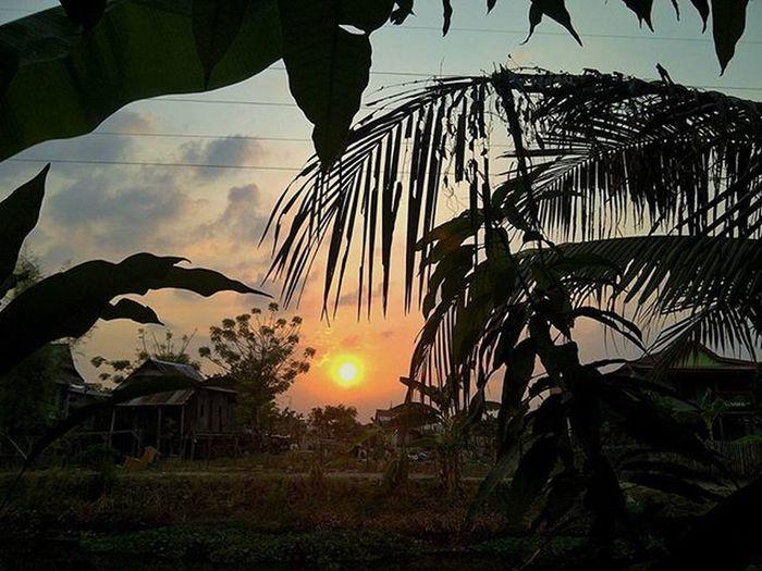 I'm the sunrise of sunsets, and I make love like noon at midnight. Instapinrang Instapinrang_member