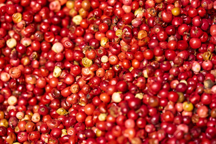 Full frame shot of red peppercorns