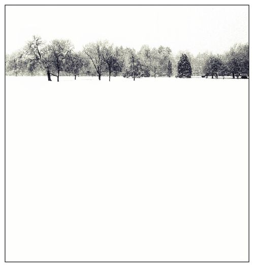 Snowline IPSMinimalism snow landscape Iphoneography b&w black and white winter