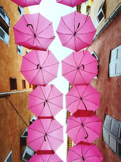 Low angle view of multi colored umbrellas hanging on tiled floor