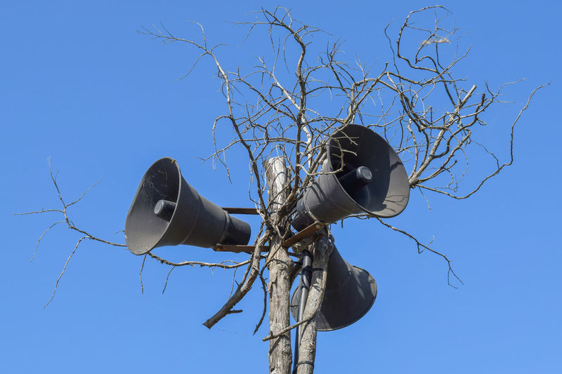 Low angle view of megaphones on bare tree against clear blue sky