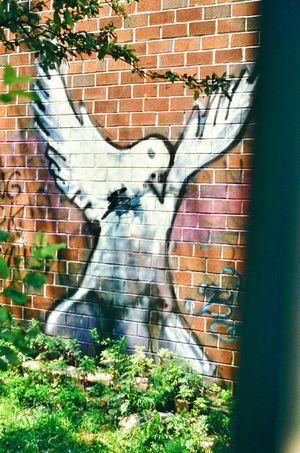 Peaceonearth Graffiti Art Brick Wall Analogue Photography 1985 Urban Spring Fever