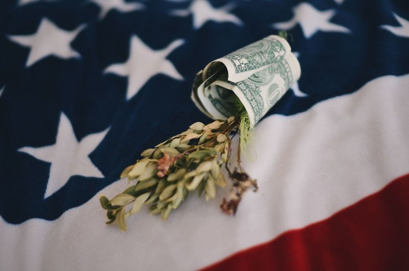 High angle view of currency with leaves on american flag