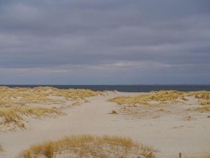 Dünenlandschaft Sand Dune Water Low Tide Sea Beach Sand Marram Grass Wave Arid Climate Coast Coastline Ocean Sandy Beach Tide Seascape