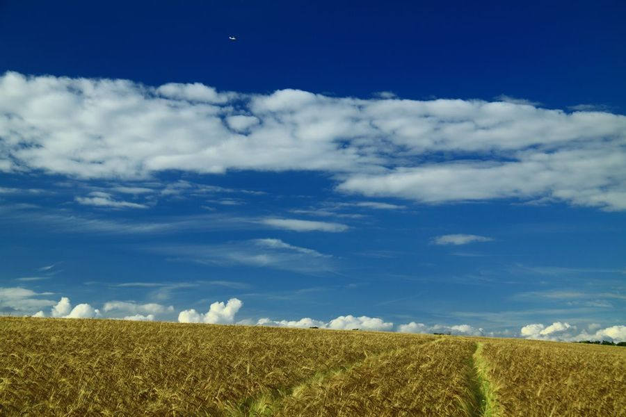 The Cotswolds Scenics Sky Outdoors Non-urban Scene Rural Scene Field Farmland Dramatic Sky Cloudscape Blue Wheat Fields
